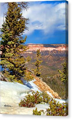 Bryce Canyon Cliff Shot 4 Canvas Print by Marti Green