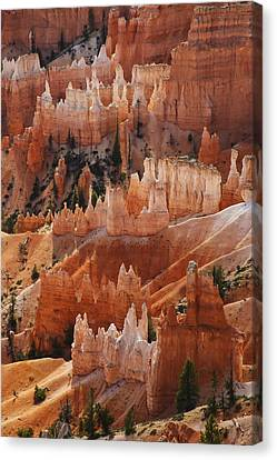 Bryce Canyon Hoodoos Canvas Print by Lee Kirchhevel