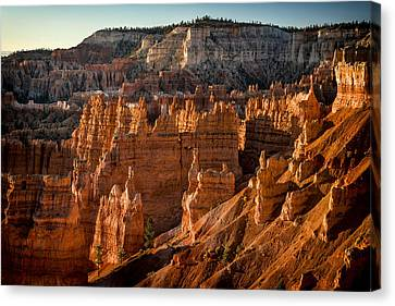 Bryce Canyon II Canvas Print by Jeff Burton