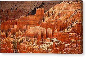 Bryce Canyon Landscape Canvas Print by Jane Rix