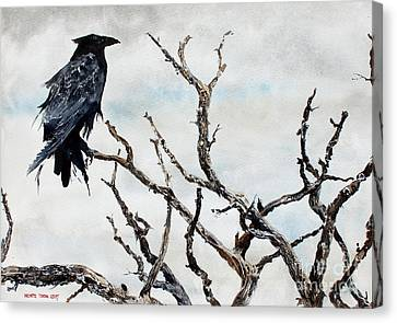 Bryce's Raven Canvas Print by Monte Toon