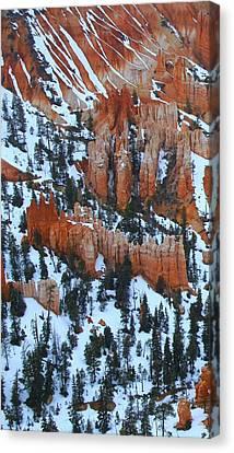 Bryce Canyon Series Nbr 22 Canvas Print