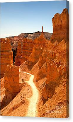 Hoodoos Canvas Print - Bryce Canyon Trail by Jane Rix