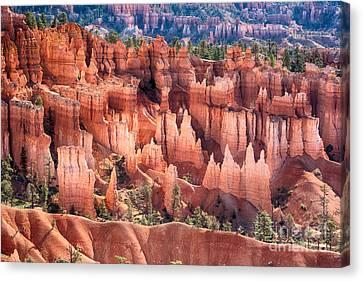 Bryce Canyon Utah Views 508 Canvas Print