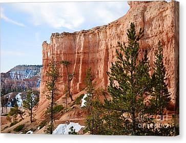 Bryce Canvas Print - Bryce Curved Formation Wall by Rincon Road Photography By Ben Petersen