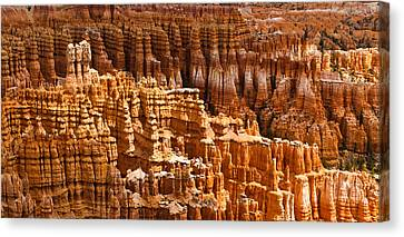 Bryce Hoodoos Canvas Print by Adam Pender