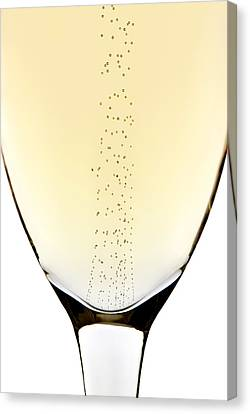Bubbles In Champagne Canvas Print by Johan Swanepoel