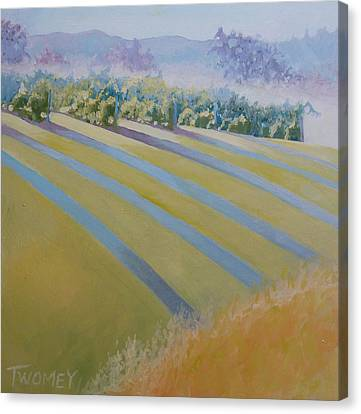 Buck Mountain Vineyards No.2 Canvas Print by Catherine Twomey
