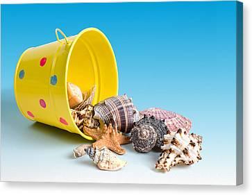 Beach Pails Canvas Print - Bucket Of Seashells Still Life by Tom Mc Nemar