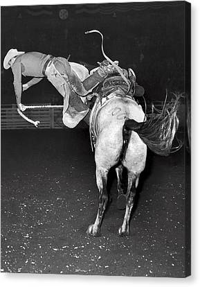 Bucking Bronco Departure Canvas Print by Underwood Archives