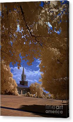 Bucknell 2 Canvas Print by Mike Kurec