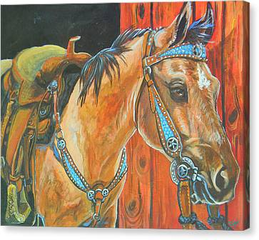 Buckskin Filly Canvas Print by Jenn Cunningham