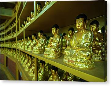 Buddha Collection Underneath The Golden Canvas Print by Michael Runkel
