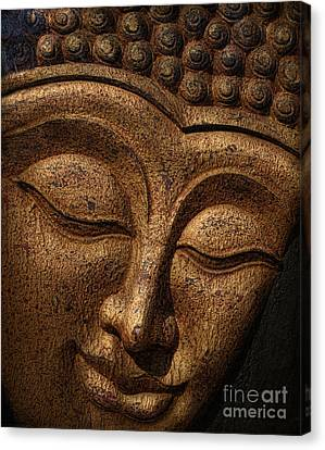 Thai Canvas Print - Buddha by Elena Nosyreva