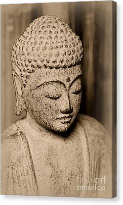 Buddha Enlightened Canvas Print by Paul Ward