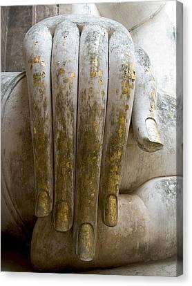 Buddha Hand Canvas Print by Zina Zinchik