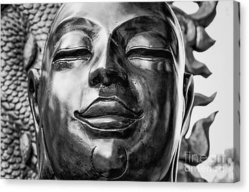 Buddha Smile Canvas Print by Dean Harte