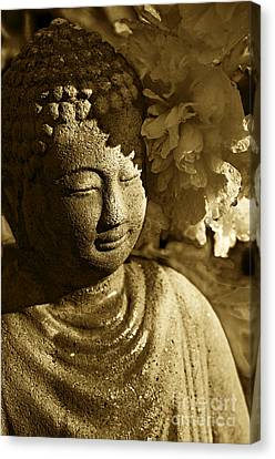 Buddha's Kiss Canvas Print by Catherine Fenner