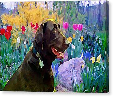 Buddy In Heaven Canvas Print by Anne Sterling