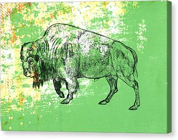 Canvas Print featuring the photograph Buffalo 11 by Larry Campbell