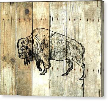 Canvas Print featuring the drawing Buffalo 9 by Larry Campbell