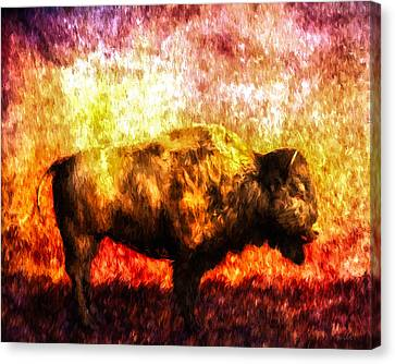 Buffalo Canvas Print by Bob Orsillo