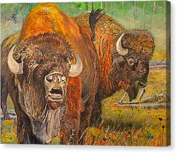 Buffalo Calling Canvas Print by Alvin Hepler