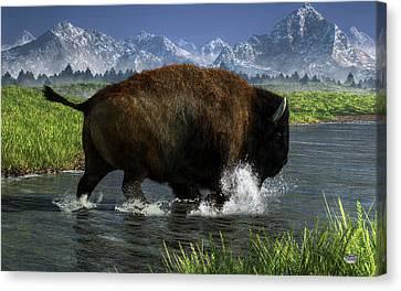 Buffalo Crossing A River Canvas Print by Daniel Eskridge
