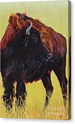Buffalo Girl Canvas Print