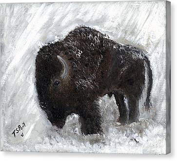 Canvas Print featuring the painting Buffalo In The Snow by Barbie Batson