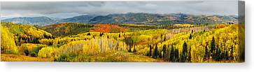 Buffalo Pass Steamboat Springs Co Canvas Print by Teri Virbickis