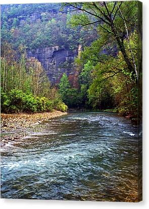 Buffalo River Downstream Canvas Print by Marty Koch