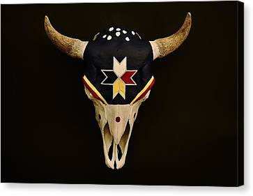 Buffalo Skull Canvas Print by Joy Bradley