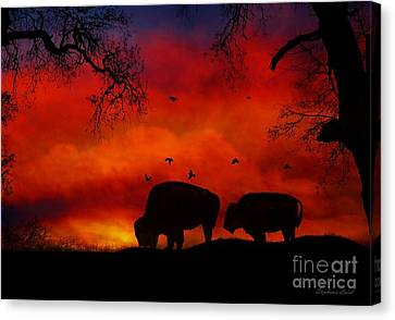 Buffalo Sunset Canvas Print