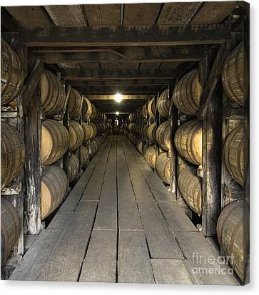 Buffalo Trace Rick House - D008610sq Canvas Print by Daniel Dempster