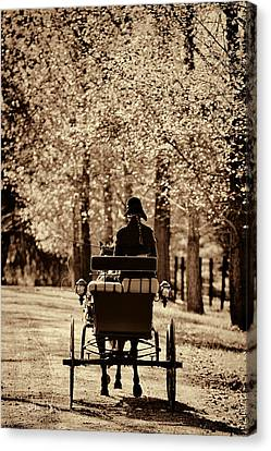 Buggy Ride Canvas Print by Joan Davis