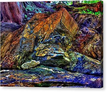 Canvas Print featuring the photograph Buggy Rock by Karen Horn