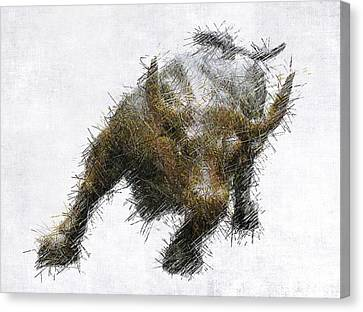 Bull Market Canvas Print by Daniel Hagerman
