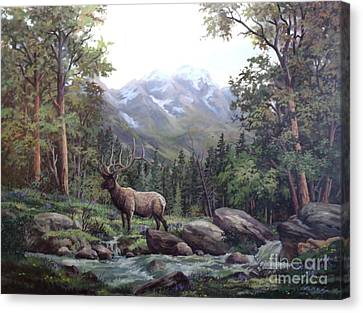 Bull Meadow Canvas Print by W  Scott Fenton