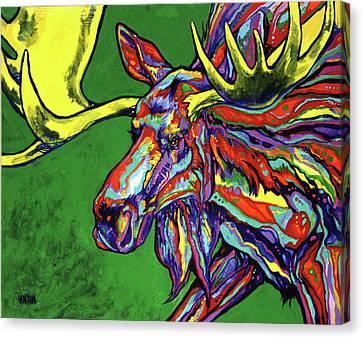 Bull Moose Canvas Print by Derrick Higgins