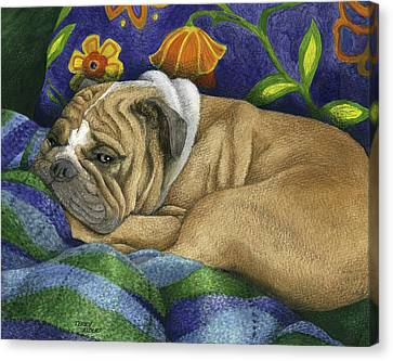 Bulldog Napping Canvas Print