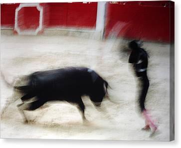 Bullfight  1 Canvas Print