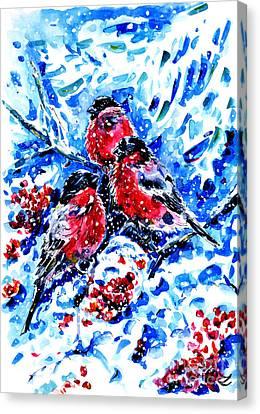 Bullfinches Canvas Print by Zaira Dzhaubaeva
