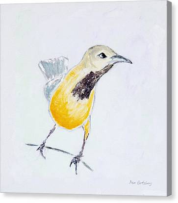 Bullock's Oriole No 1 Canvas Print by Ben Gertsberg