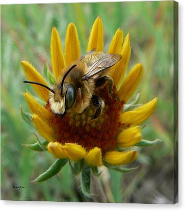 Bumble Bee Beauty Canvas Print by Barbara St Jean
