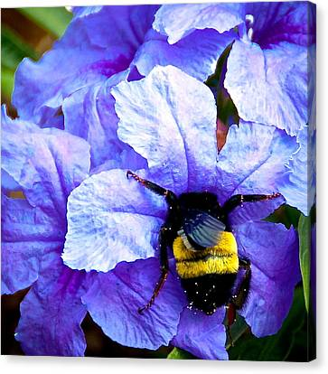 Canvas Print featuring the photograph Bumblebee Brunch by Dee Dee  Whittle
