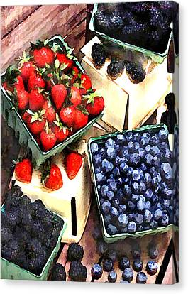 Bunch Of Berry Boxes Canvas Print by Elaine Plesser
