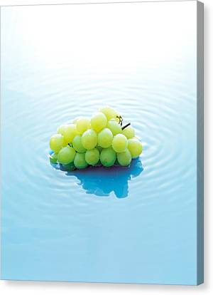 Bunch Of Grapes Floating On Water Canvas Print