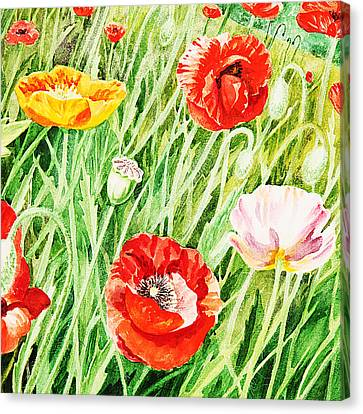 Bunch Of Poppies I Canvas Print