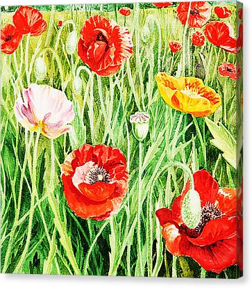Bunch Of Poppies II Canvas Print